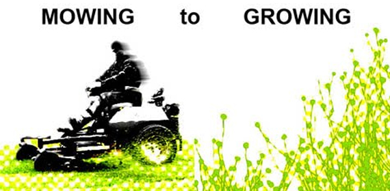 One Prize - Mowing to growing