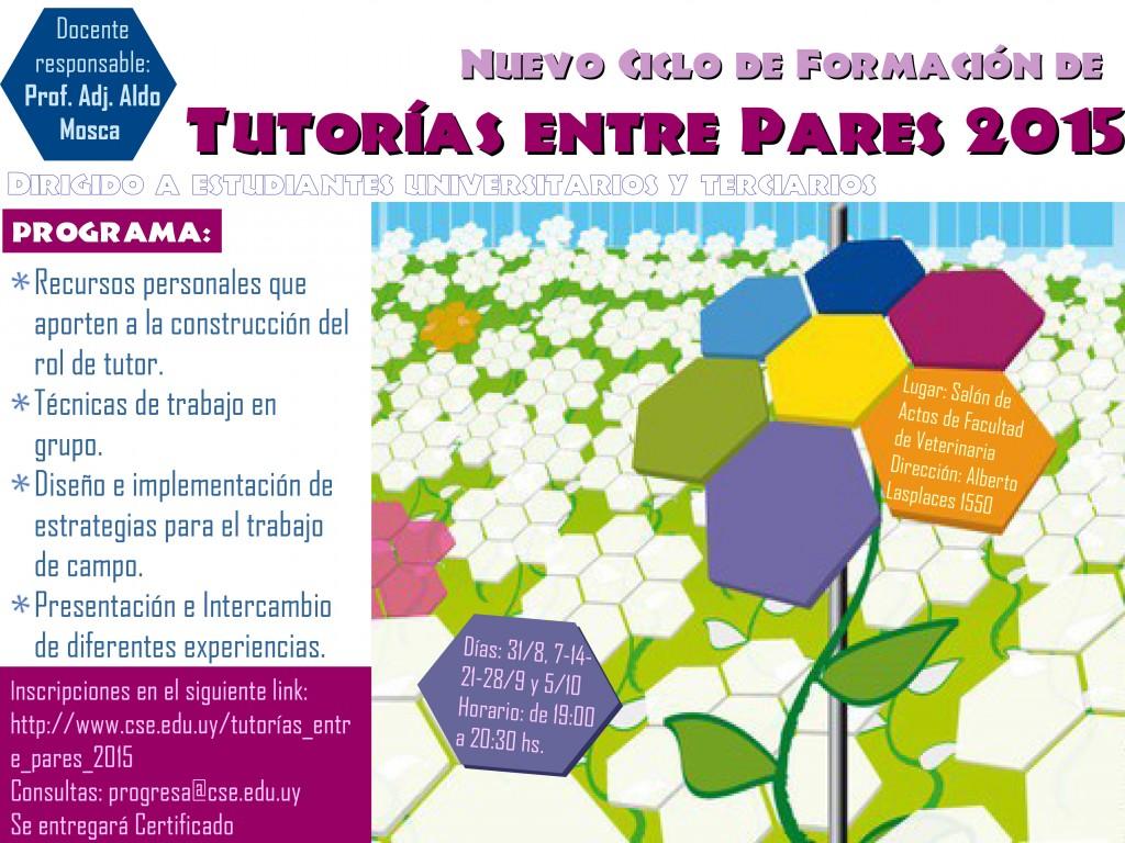 afiche_tutoría_2015