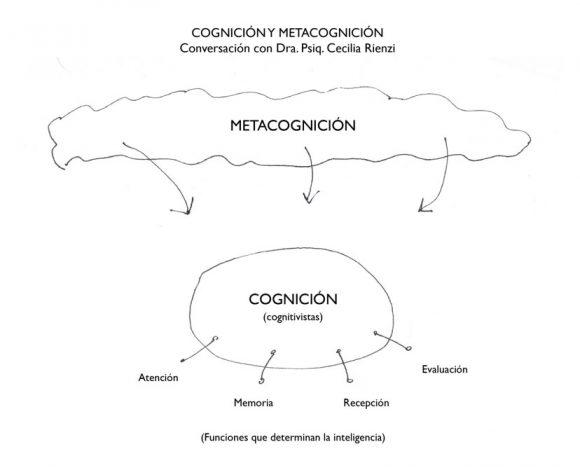 Figura 5. Esquema que explica la relación entre Cognición y Metacognición en base a conv. con Dra. Psiq. Cecilia Rienzi