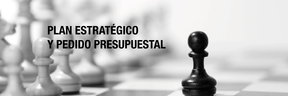 AVANCES DEL PLAN ESTRATÉGICO. LINEAMIENTOS Y ORIENTACIONES. PEDIDO PRESUPUESTAL 2015-2019