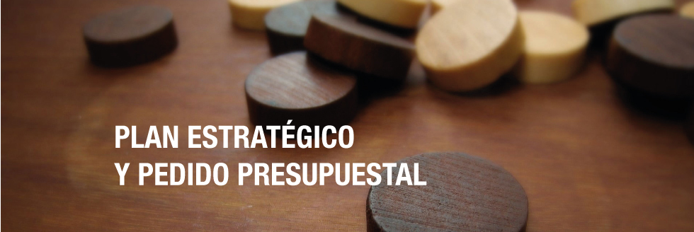 Avances del Plan Estratégico. Pedido presupuestal 2015-2019