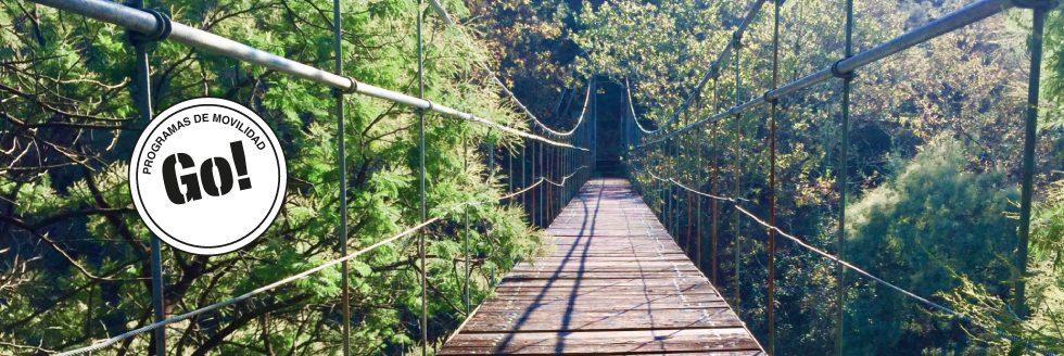 Llamado a Docentes de FADU | Beca Santander Universidades